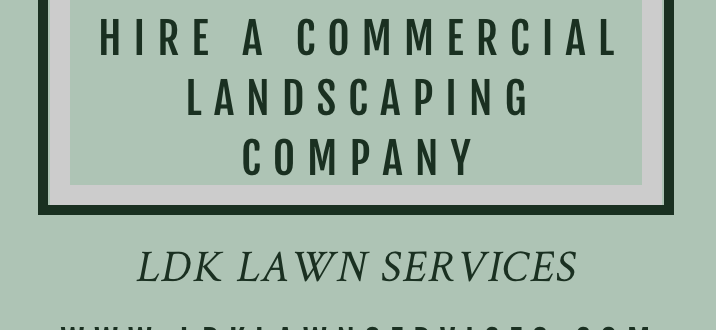 Commercial Landscaping Near Me Ldk Lawn Services