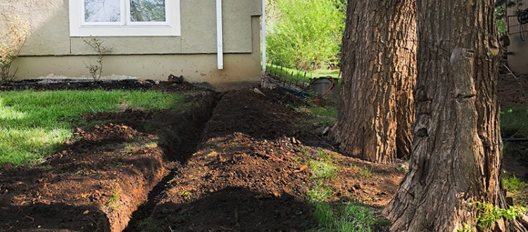 Do You Need a Custom Drainage Solution? - LDK Lawn Services