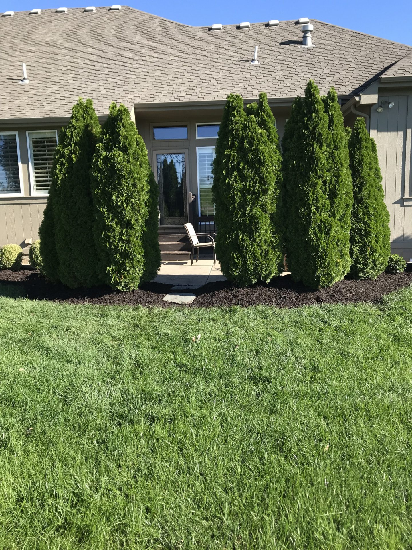 Shrub Wall Lawn Care Companies In Kc Ldk Lawn Services